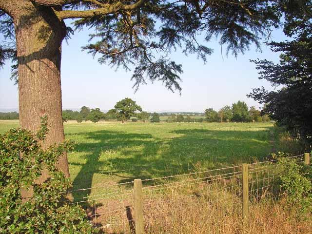 Parkland south of Carlisle