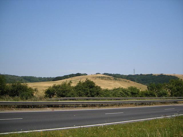 Butser Hill and Hilhampton Bottom