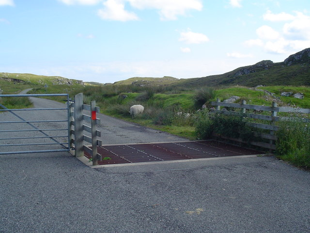 Cattle Grid on Pentland Road