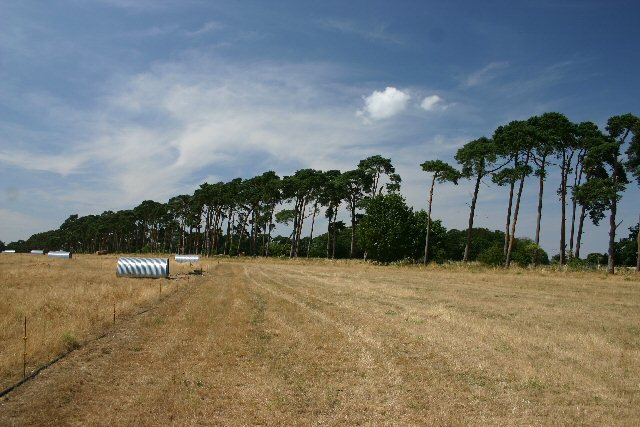 West Calthorpe Heath