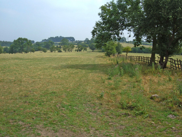 Bridleway (High Lane)