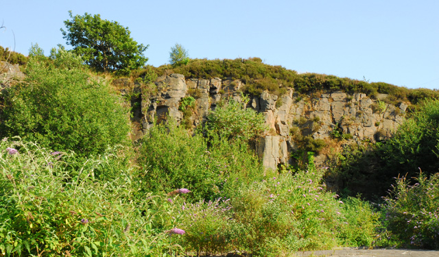 Disused Quarry at Giant's Grave, Briton Ferry