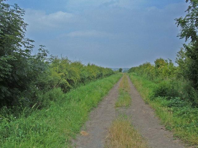 Bridleway to Spofforth