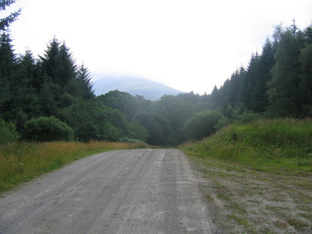 Forestry road to Succoth Lodge