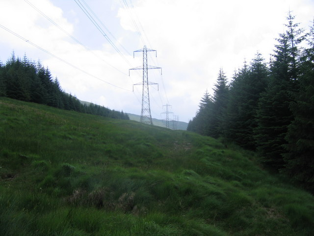 Pylon line and forest