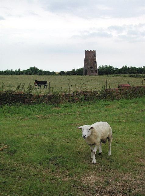 "The ""Old Windmill"" near Aldbrough Road, Garton"