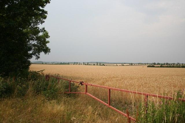 Trent Valley view