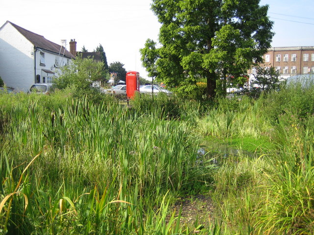 Ickenham Village Pond