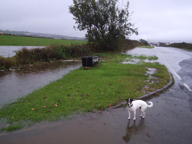 Flooded road,  Pont Trecynni