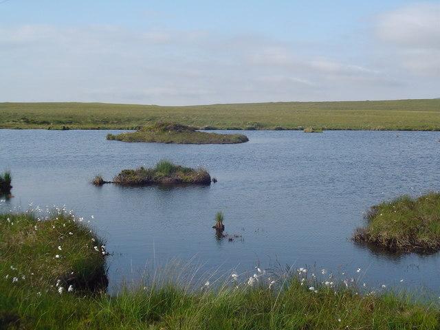 Islets in Loch