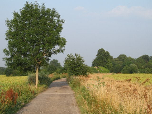 Byway between Great Chalfield and Little Chalfield