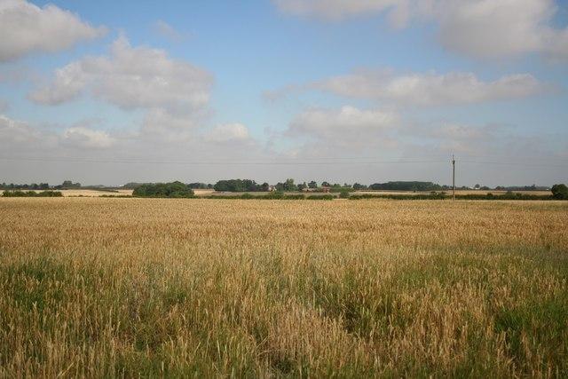Wire Hill Farm