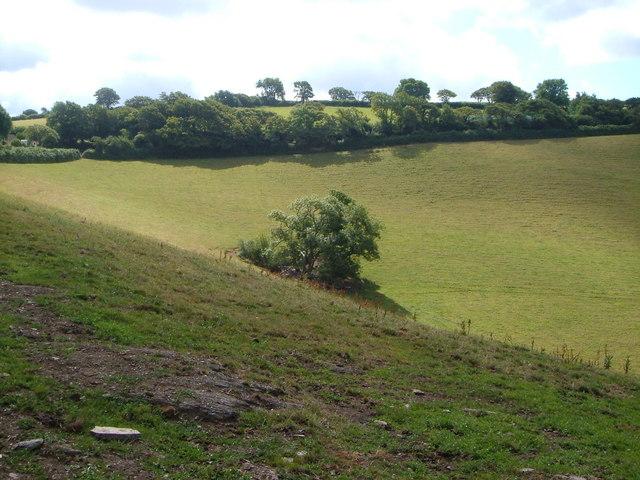 Near Rowden