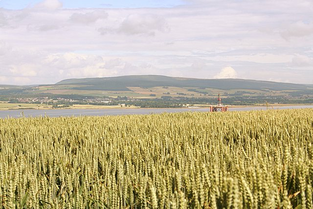Looking northwestwards across the Cromarty Firth.