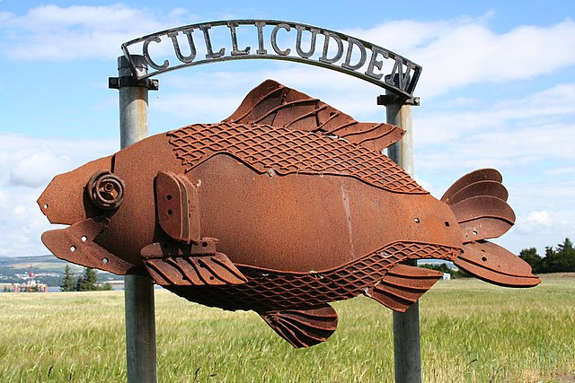 This fish is across the road from the primary school at Cullicudden!!