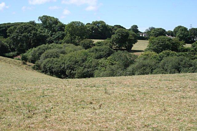 Valley by Lanner Barton Farm