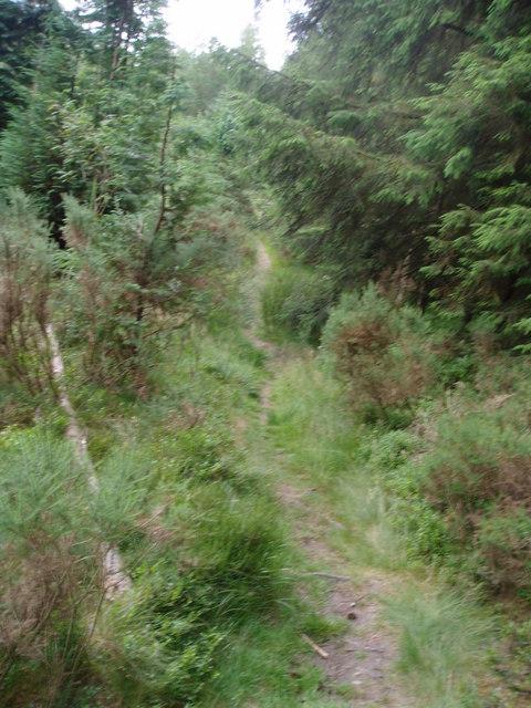 Path up Pincyn Llys