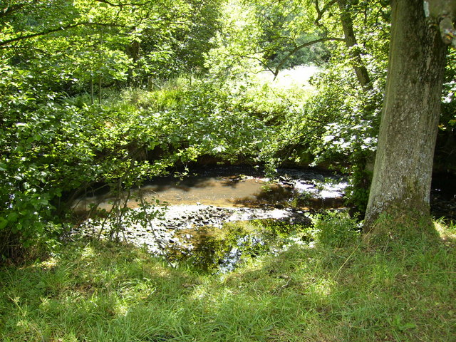 The River Dove near the Daffy Cafe in Farndale