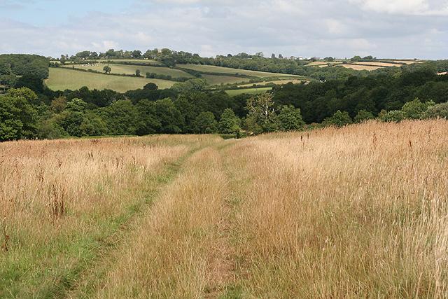 South Tawton: near East Nymph