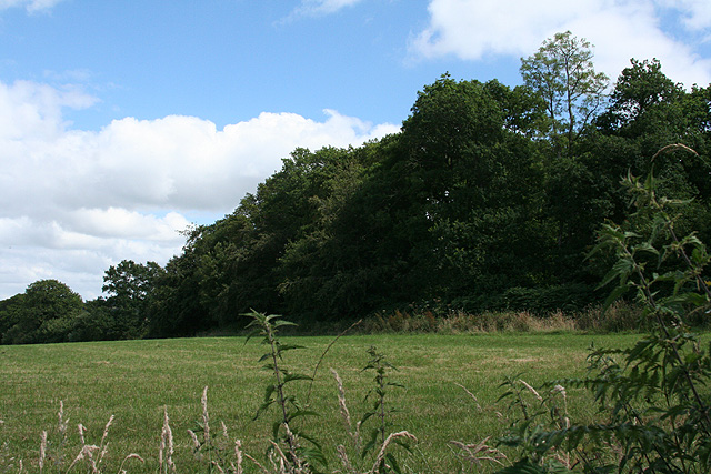 South Tawton: near West Cullaford