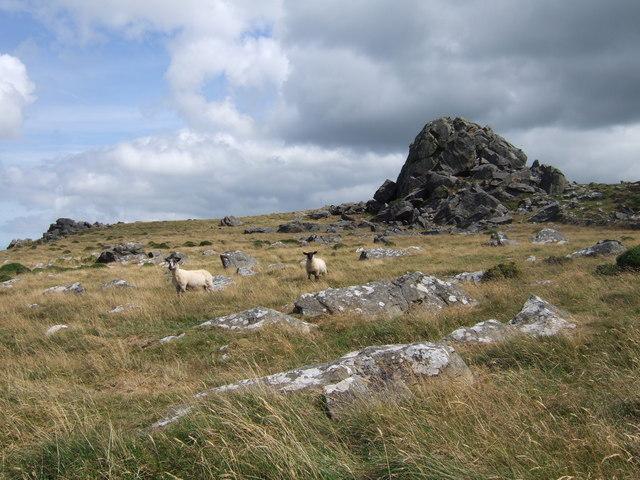 Garn Fawr, Mynydd Dinas
