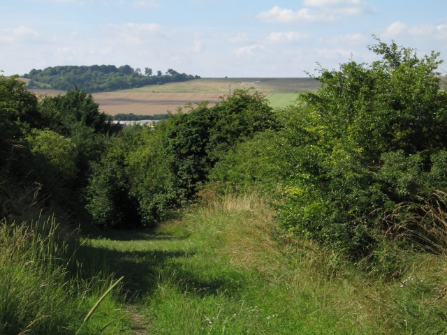 Byway with view to Roundway Hill