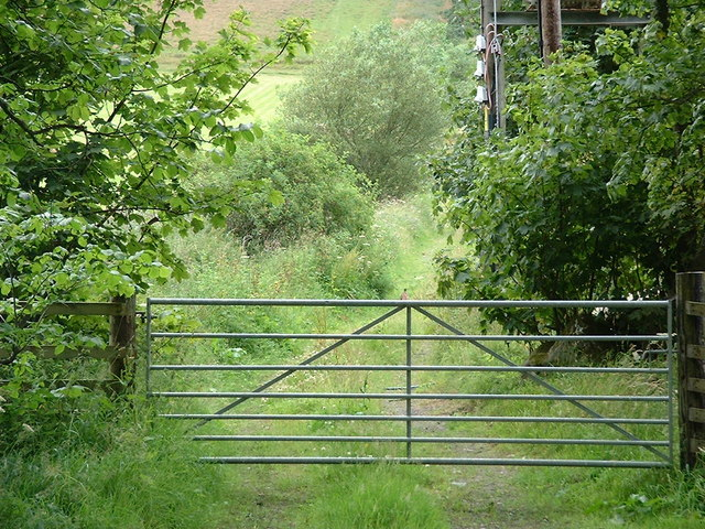 Track to sheepfold above Lemlair farm