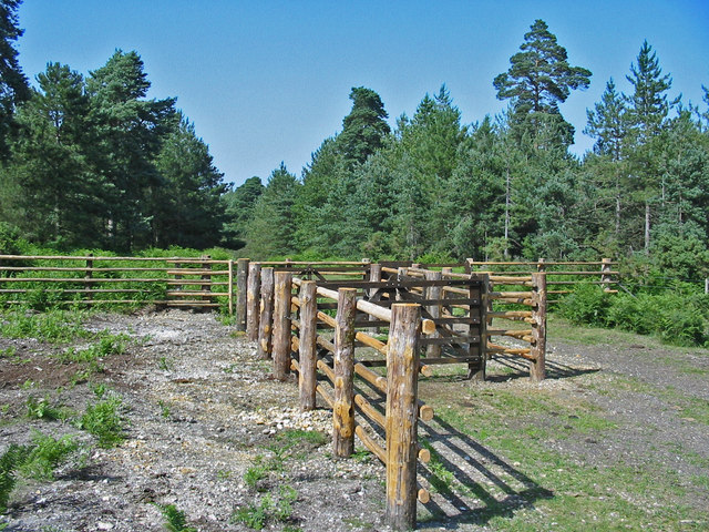 Pound at entrance to Slufters inclosure New Forest Hampshire