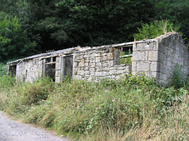 Disused Cottage near Ffrith