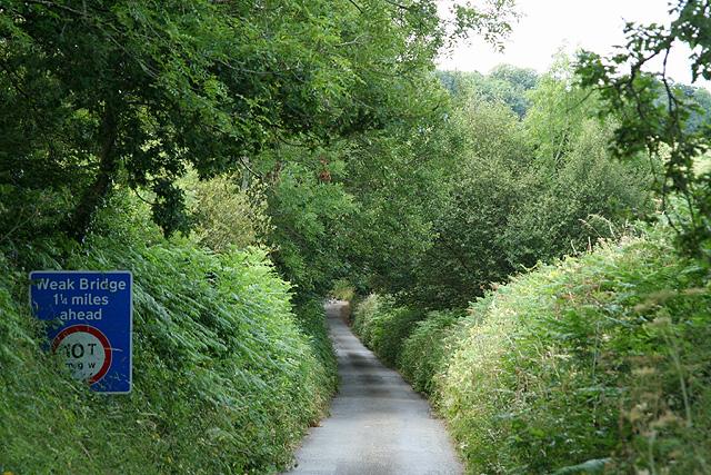 South Tawton: near Wyke Moor Cross