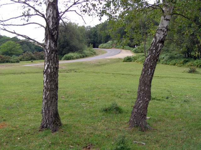 Furzley Road climbing Crock Hill, Cadnam Common