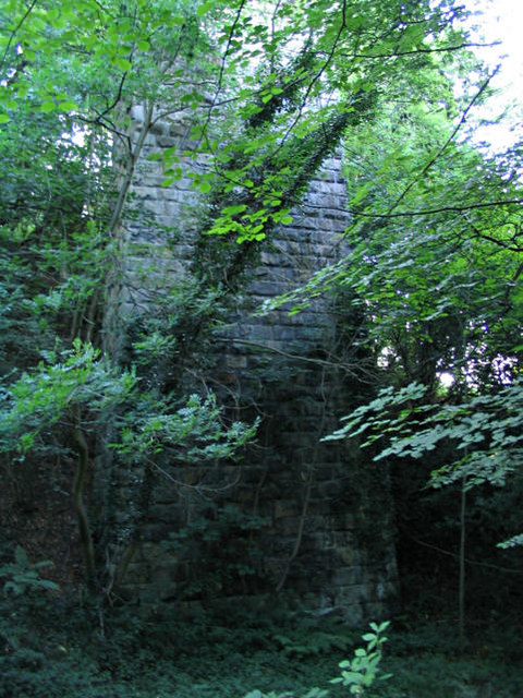 Overgrown column of disused viaduct near Ffrith
