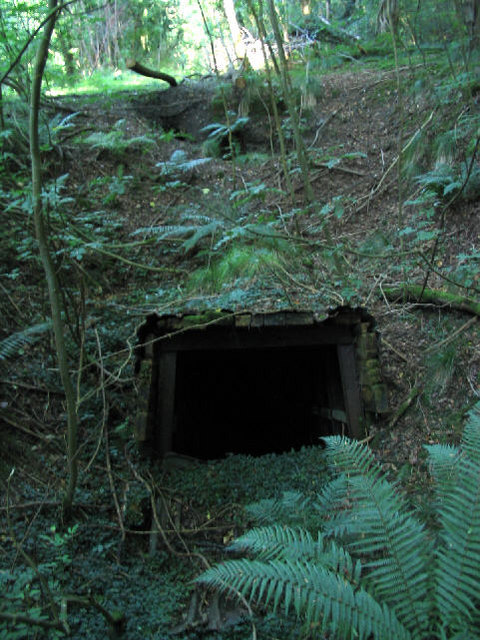 Mine shaft near Ffrith