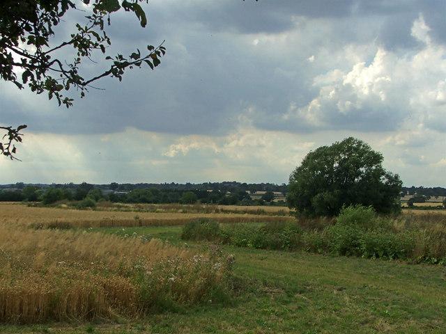 Farmland opposite Coveney Nursery, Ongar Road