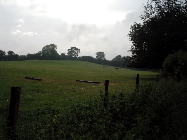Pasture north of Netherton