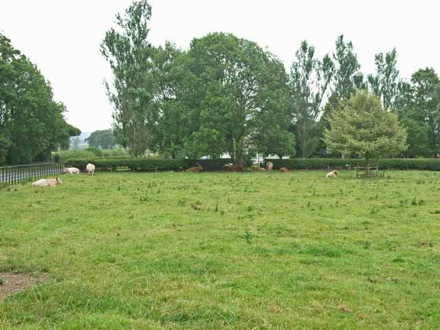 Parkland at Corby Hill, Warwick Bridge
