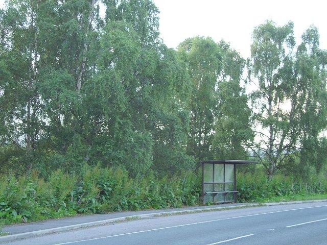 Bus shelter, Highfield