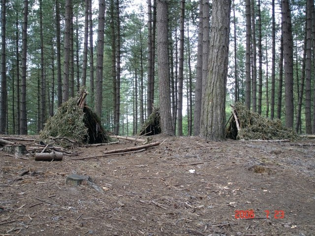 "Manley. Cod ""Neolithic"" camp, Delamere Forest"
