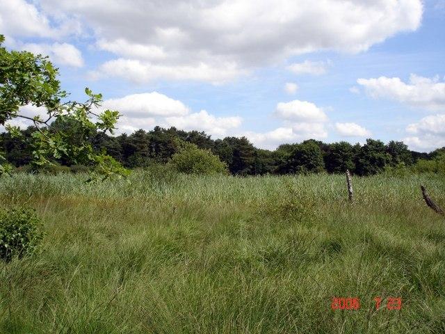 Norley - Hatch Mere