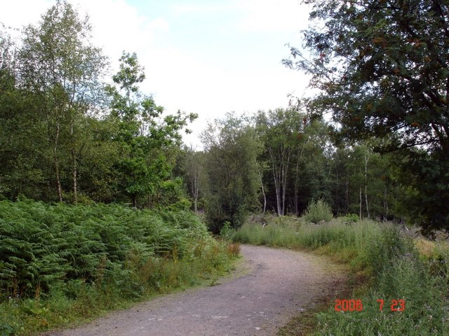 Oakmere - Delamere Forest