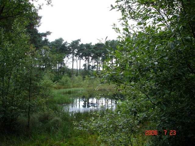 Delamere - Black Lake in Delamere Forest