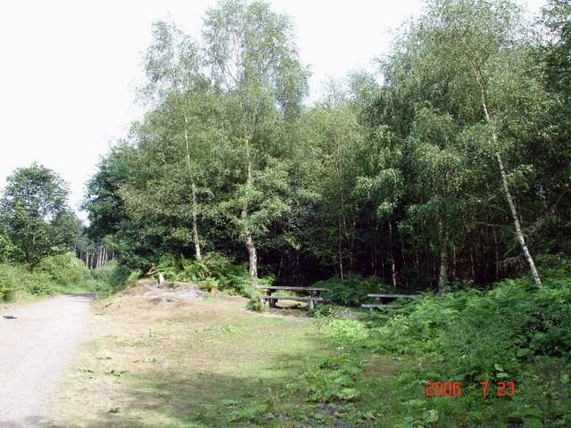 Manley - picnic area in Delamere Forest