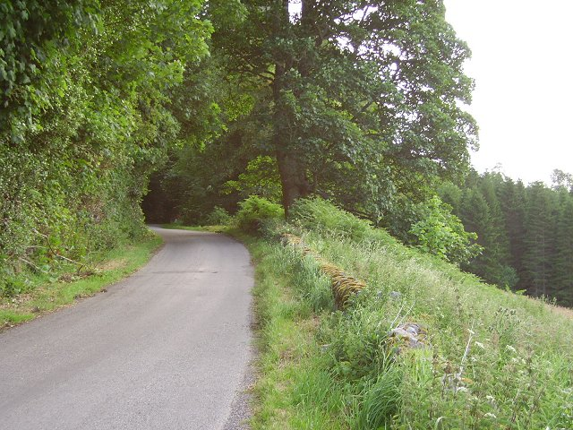 Glen Glass Road, Assynt