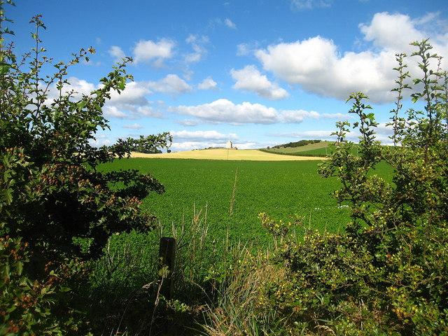 East Lothian View