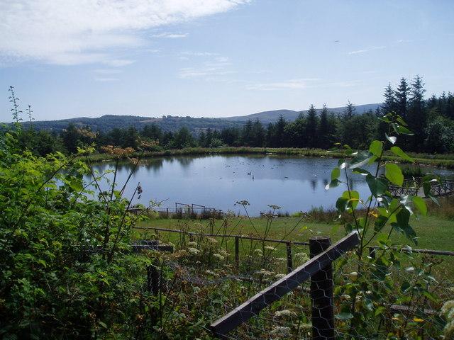 Lake at Pen y Ffrith
