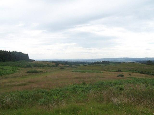 North Barlogon Wood