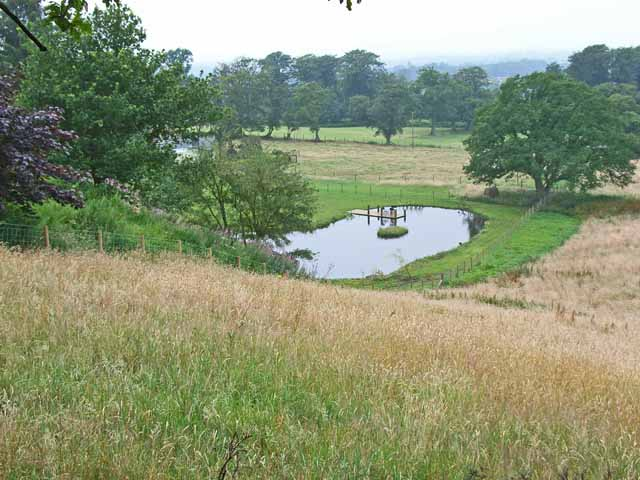 Pond at Green Hollow