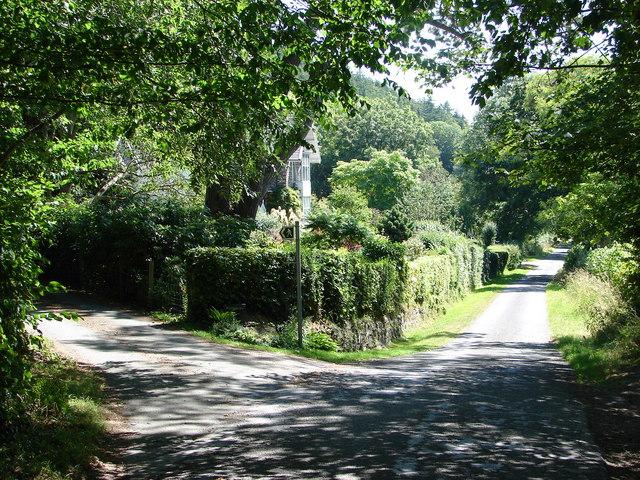Lane To Nanteos