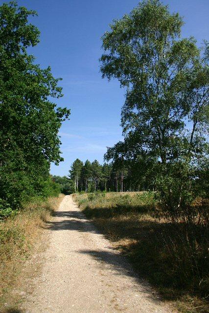 Bridleway to St Helena Farm