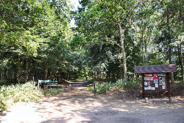 Entrance to Mildenhall Woods